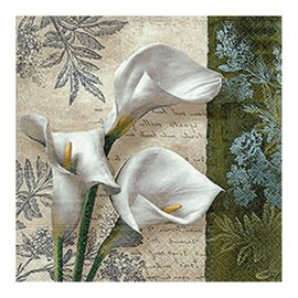 ~Paper Design~餐巾紙~White beauties 美麗如純白
