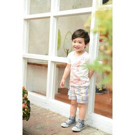 baby king  5175 格子休閒褲 80cm^~120cm