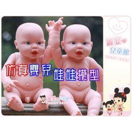 麗嬰兒童玩具館~仿真第二代褓姆娃娃-家政培訓護理娃娃.關節可彎曲.可做嬰兒按摩訓練.適合褓姆幼教考試