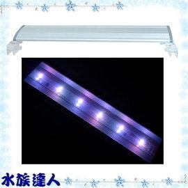 ~水族 ~鐳力Leilih~熱帶魚增豔燈.45cm^(W~R1~15^)~LED 1.5尺