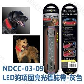 探險家露營帳篷㊣NDCC-03-09 美國 NITE IZE 項圈LED罩 - 灰色 狗項圈亮光標誌帶 寵愛寶貝