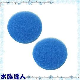 【水族達人】伊罕EHEIM《2217圓桶專用藍餅/藍棉/生化濾棉.2片入(E2616171)》