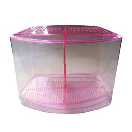 微笑的魚水族~~彩虹 雙槽 鬥魚盒~粉紅色 飼養  繁殖  隔離箱