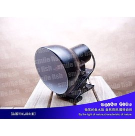 RTL~01A~S 微笑的魚水族~ OTTO~奧圖~爬蟲 夾燈^(燈罩^) 胡瓜型~^(不