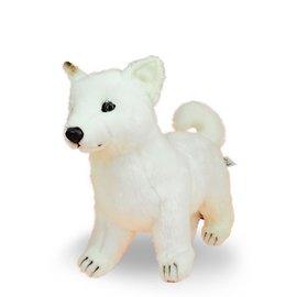 6342北海道幼犬33公分長