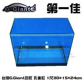 ^~第一佳水族寵物^~C100508 G.Giant巨匠 孔雀缸^(魚缸.空缸^) 1尺3