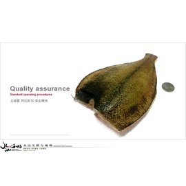 野生海捕 阿拉斯加黃金鰈魚2隻^(350g^~370g 1包^) 乾煎清蒸紅燒香嫩