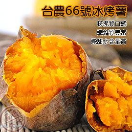 ~OurMart 食坊~美味一級棒 ~台農66號冰烤蕃薯^(甘藷^)^(地瓜^)~口感嫩甜