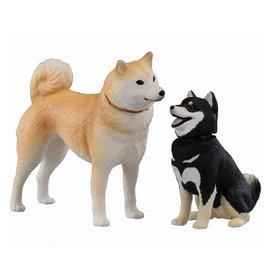 ANIA探索動物 多美動物園 AP~01 柴犬  豆柴犬 TOYeGO 玩具e哥
