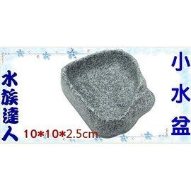 【水族達人】《小水盆》寵物水盆 水盤 仿造大自然岩石造型