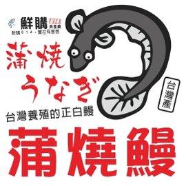 ~鮮購614美食網~ 養殖正白鰻,蒲燒鰻^(裸鰻,醬汁5^%^),規格250克 包
