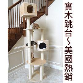 美國 ~Armarkat Premium完美實木耐重頂天立地貓跳台~貓樹~少量 !