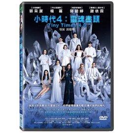 合友唱片 小時代4:靈魂盡頭 DVD Tiny Times 4.0
