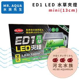 ^~ 河北水族 ^~ MR AQUA 水族先生 ~ ED1 LED 水草夾燈 mini 1