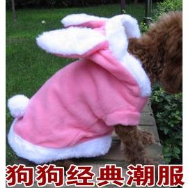 寵物 泰迪 貴賓 比熊 貓狗衣服 加厚 裝兔子變身裝 賣萌衣服