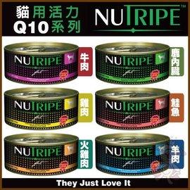 ~GOLD~~6罐入賣場~紐西蘭~紐萃寶Q10強化系列~貓罐~95g