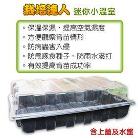 ~栽培 ~扦插、播種,提高成功率,方便管理,迷你小溫室^(保濕透明蓋育苗箱^)附水盤