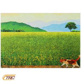 ~TRC 鐵道故事館╱絕版 ~~Chishang 池上~貓咪的小確幸- 環島系列╱螢幕擦拭