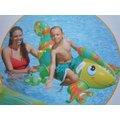玩樂 美國INTEX 56569 彩色蜥蜴充氣坐騎 動物 坐騎 有手把 兒童夏天玩水 游泳