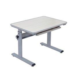 ~文碩~兒童傢俱^~ 兒童成長桌 MINI書桌^(可調式課桌椅 成長課桌椅 升降課桌椅 ^