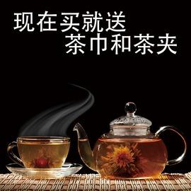 小喬煮茶加厚玻璃茶具水果紅草花茶壺套裝整套耐熱過濾功夫茶杯盤單個杯