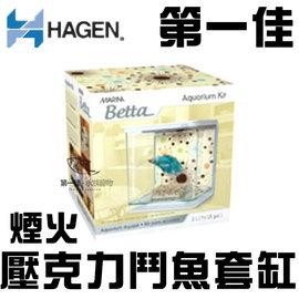 ^~第一佳 水族寵物^~加拿大HAGEN赫根 壓克力鬥魚套缸 盒 孔雀^(含飼料.藥水.砂