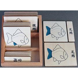 3~6歲蒙特梭利語文教具:動物部分名稱三段卡:魚(國字,含盒)