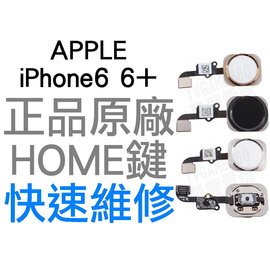 APPLE iPhone6 6 Plus 4.7 5.5 HOME鍵^(工廠流出拆機品 9