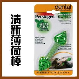 ~幸福寶貝寵物Go~~美國 Petstages貓玩具~清新薄荷棒(貓咪 )網狀潔牙 ,內藏