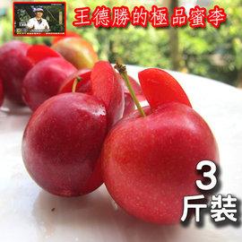 ~菁英農場~拉拉山極品蜜李^(3斤裝^)