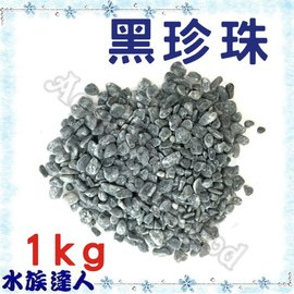 【水族達人】【底砂】《黑珍珠 散裝 1kg (1分約5mm)》水草/庭園/盆栽造景!