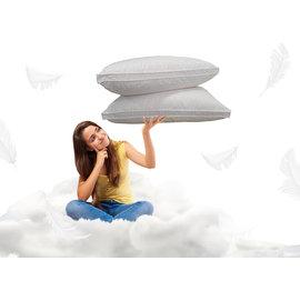 台南羽絨枕 YATI雅媞寢具~台南 永康 新營~asleep~舒柔立體羽絨枕 枕頭45^~
