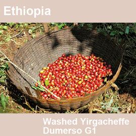 ~福璟咖啡豆 ~衣索比亞 水洗耶加雪菲 督門索 杜梅索處理廠 ECX G1 Ethiopi