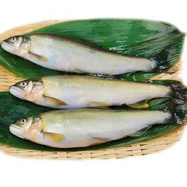 ~527我愛吃崁仔頂魚市~宜蘭養殖當天現撈香魚5台斤^(約22~23尾 箱^)