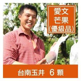 一籃子~台南玉井~愛文芒果~優級品^(5斤6粒^)