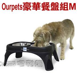美國Ourpets.架高豪華餐盤組~M號~^#11491 寵物 餐桌 幫助進食不易嘔吐 架