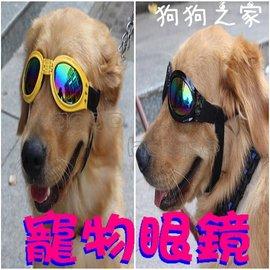 ~狗狗之家~潮狗 寵物太陽眼鏡 防風 防雨 防護眼鏡 墨鏡(適中大型犬)