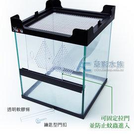 ~AC草影~HIROTA 兩棲爬蟲缸(20x20x25)~一個~