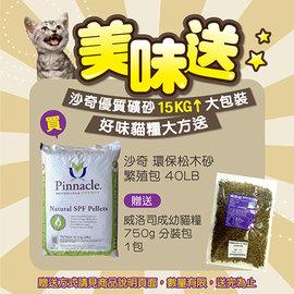~消暑價~沙奇 天然環保松木砂~繁殖包~40LB 磅^(約18kg^)~409元~免 ~^
