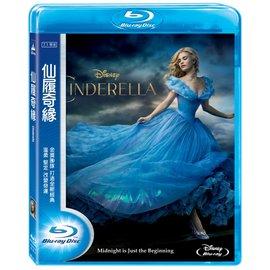 合友唱片 仙履奇緣 藍光 Cinderella BD  ~07 31