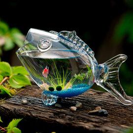 5Cgo ~ 七天交貨~523058467991 魚缸水族箱魚形玻璃魚缸生態中小金魚缸超白