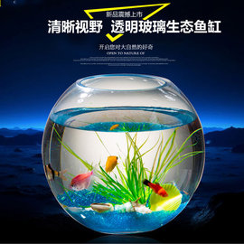5Cgo ~ 七天交貨~523151546795 透明圓形玻璃魚缸生態金魚缸中小型迷你桌面