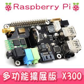 擴展版 X300