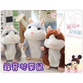 麗嬰兒童玩具館~愛說話的錄音花栗鼠-回音唱歌小倉鼠-學人說話小田鼠公仔.電子寵物鼠