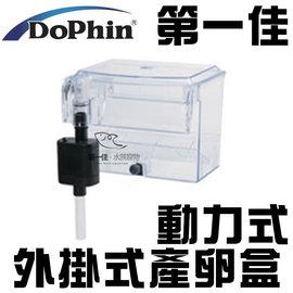 ^~第一佳 水族寵物^~海豚Dophin 動力式外掛式產卵盒 繁殖盒 飼育盒 隔離箱 BB