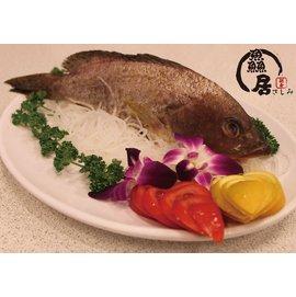 ~ #40059 居~新鮮 正港野生石斑魚 ~ 400~500g 尾