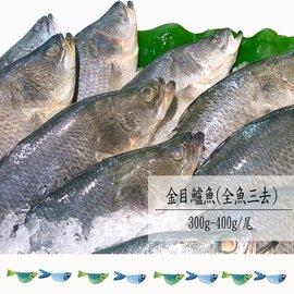 ~福爾摩沙 柯德義養殖~金目鱸魚^(全魚三去^)400^~500g 尾~原料經TAP產銷履