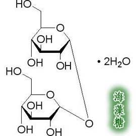~海藻糖粉~300g 包~5包 組~ 特級海藻糖粉 300g 純度大於98^% 防止澱粉老