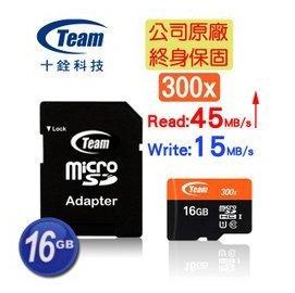 Team十銓 300X MicroSDHC16GB 16G UHS~I TF卡