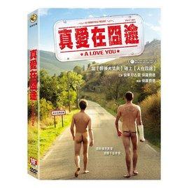合友唱片 真愛在囧途  DVD  a love you